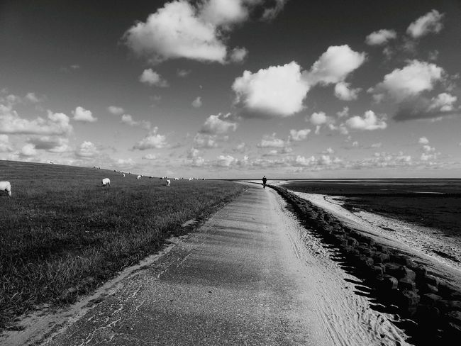 Mit ganz viel Weitblick ... Eye For Details Wide Open Spaces Black And White Photography Bnw_collection Bnw Sylt 2016 Black & White Abandoned Places Abandoned Wattenmeer Ebb Tide EyeEm Nature Lover Wadden Sea Tide Dike North Germany Monochrome Fine Art Tidelands Fine Art Photography People And Places Monochrome Photography