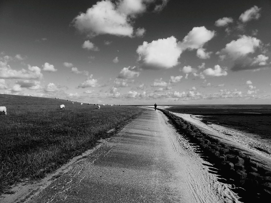 Mit ganz viel Weitblick ... Eye For Details Wide Open Spaces Black And White Photography Bnw_collection Bnw Sylt 2016 Black & White Abandoned Places Abandoned Wattenmeer Ebb Tide EyeEm Nature Lover Wadden Sea Tide Dike North Germany Monochrome Fine Art Tidelands Fine Art Photography People And Places Monochrome Photography Miles Away Welcome To Black Long Goodbye TCPM