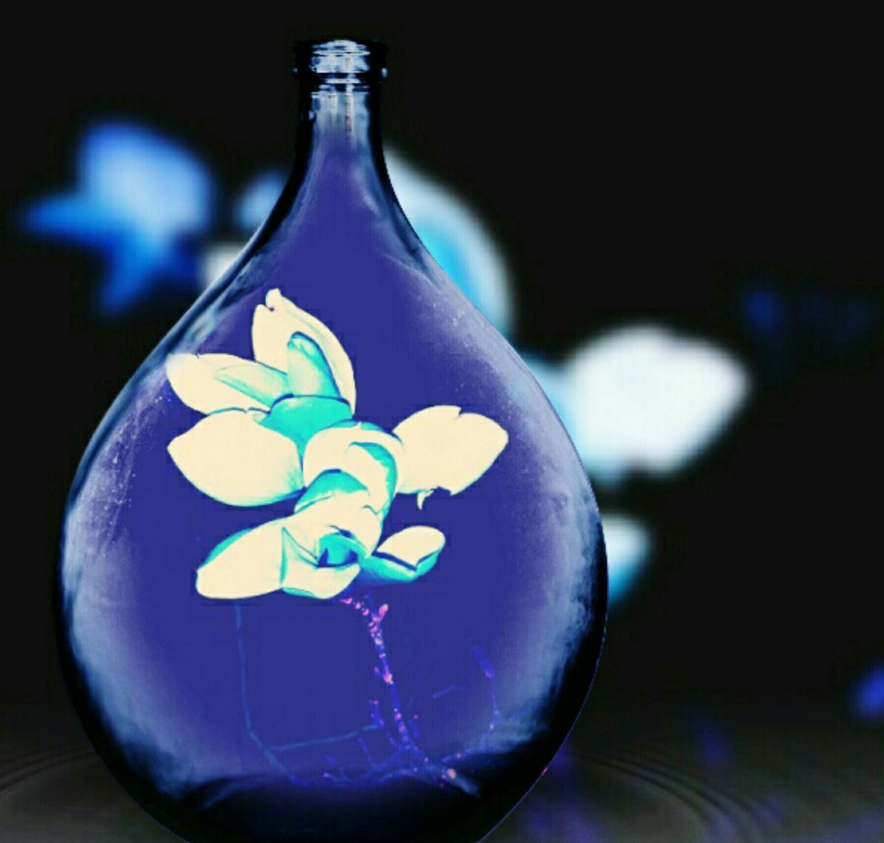 EyeEm Flower Vase WallpaperForMobile Purple Flowersinabottle Abstracts Glassofwater Screensaver Greetingcards