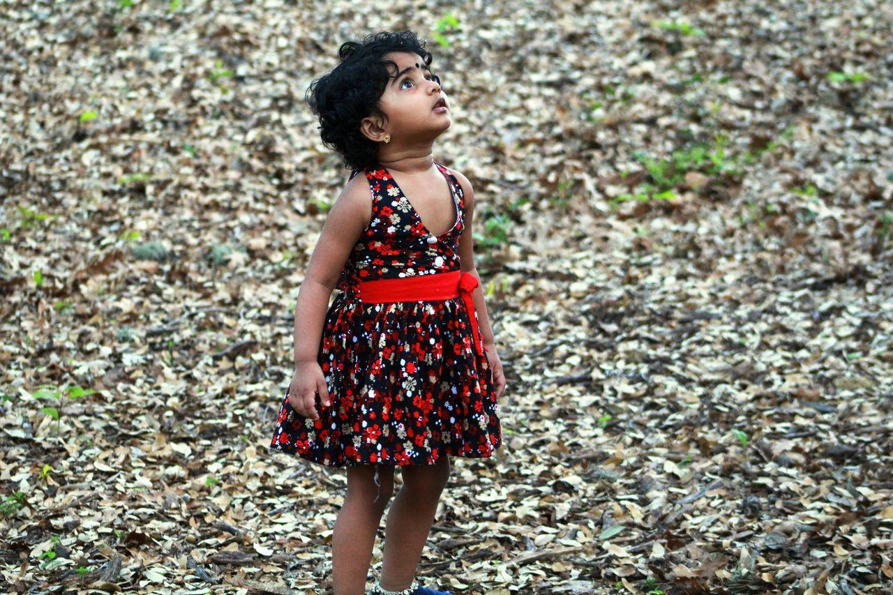 Beautiful stock photos of gott,  2-3 Years,  Alertness,  Autumn,  Childhood