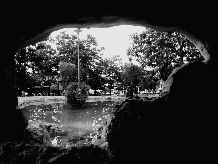 Blackandwhite Photography Sunday Friends Photography Sundaywalk Beautiful Nature Picoftheday #photooftheday #photography #iphonesia #pikturdis #WeAreTheCulture #jj_forum #webstagram #world #streetstyle #shootinupny #statigram #randomfreshness #tbt #twitter #nycphotography #nyc #les #igdaily #everybodystreet #vsco #streetphotography #s EyeEm Nature Lover Captured Moment Eye4photography