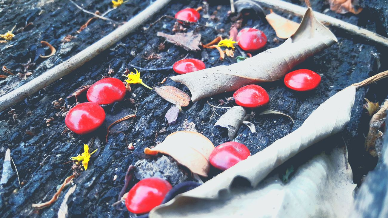 🍂🍃🔴🔴 [ 13:46 ] Photooftheday EyeEm Bangkok Thailand. SamsungJ7 Photo