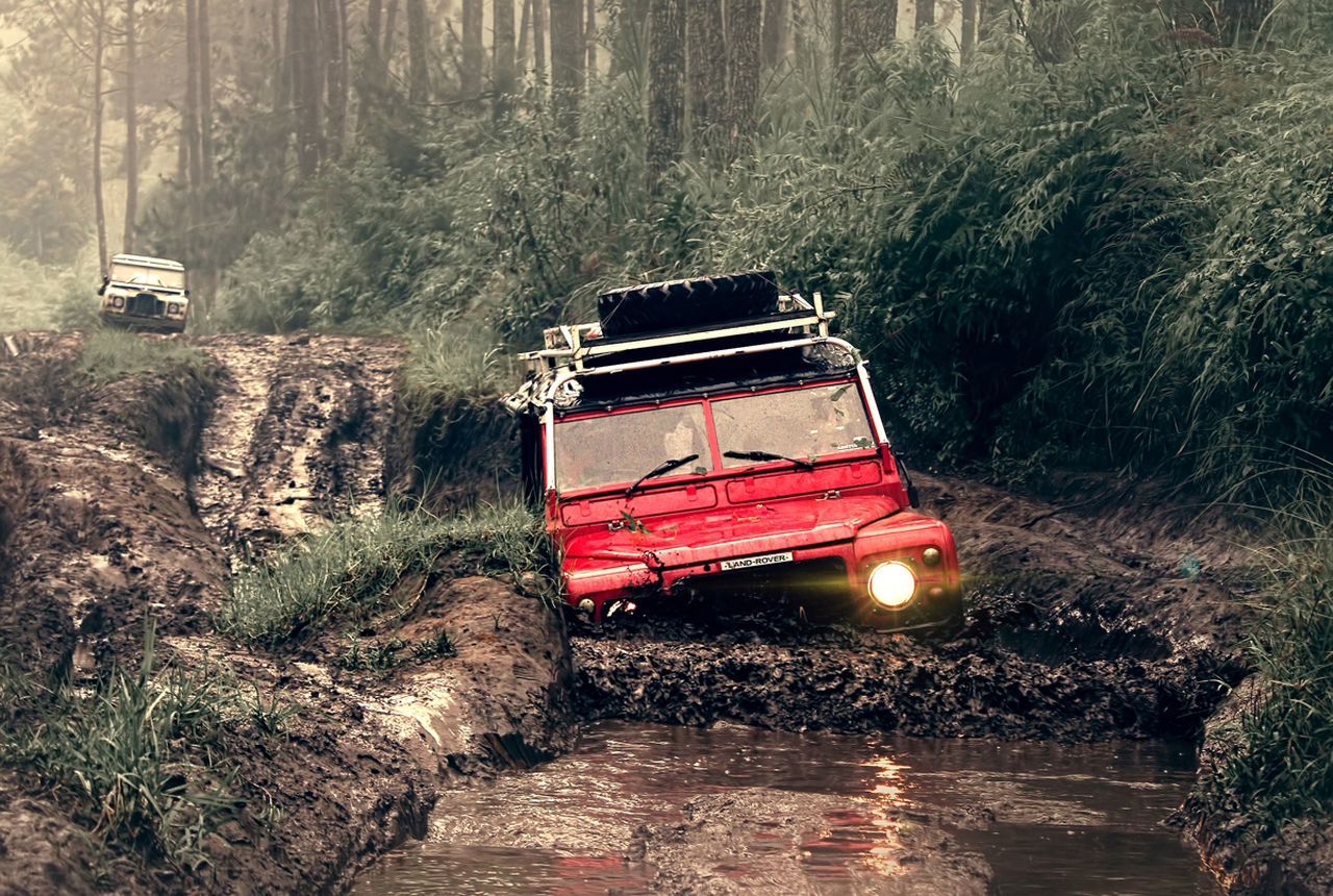 transportation, tree, land vehicle, mode of transport, no people, agriculture, outdoors, nature, day