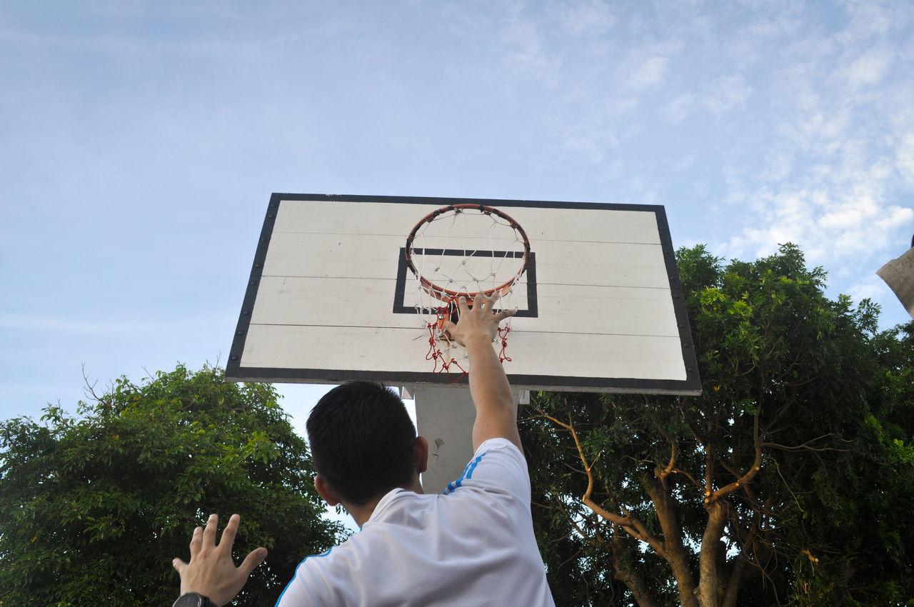 Beautiful stock photos of basketball,  Adult,  Adults Only,  Basketball,  Basketball - Sport
