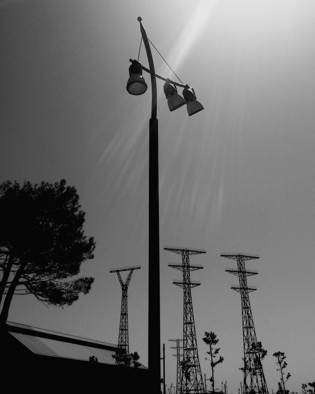low angle view, flag, silhouette, outdoors, day, sky, clear sky, no people, tree