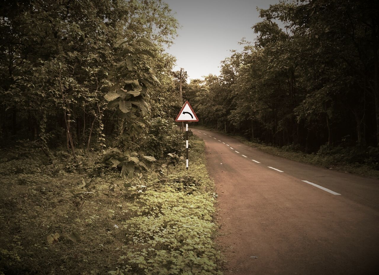 tree, road, the way forward, day, outdoors, growth, flag, nature, no people, road sign, clear sky, sky