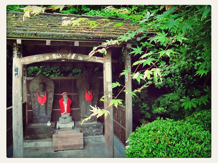 Hotspring Beautiful Japan Scenery