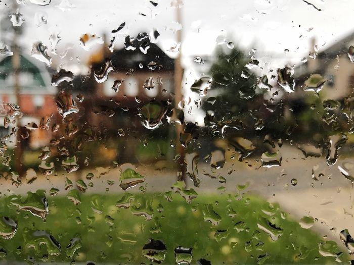 Window Glass - Material Drop Water Transparent Rain Close-up Day Wet Looking Through Window Rainy Season RainDrop No People Outdoors Nature