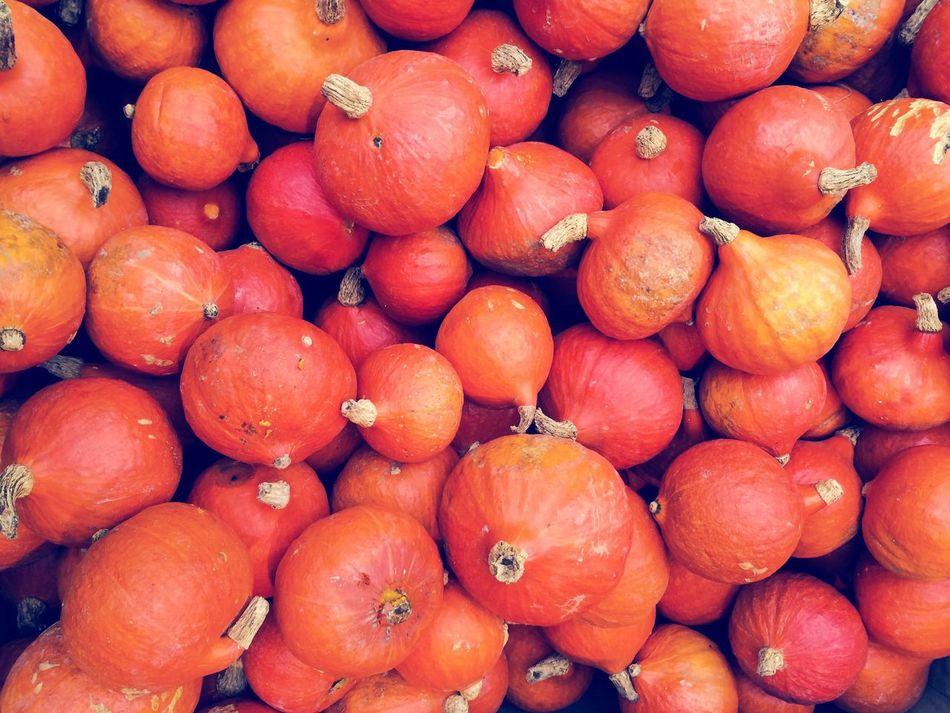 Beautiful stock photos of pumpkin, Abundance, Backgrounds, Day, Display