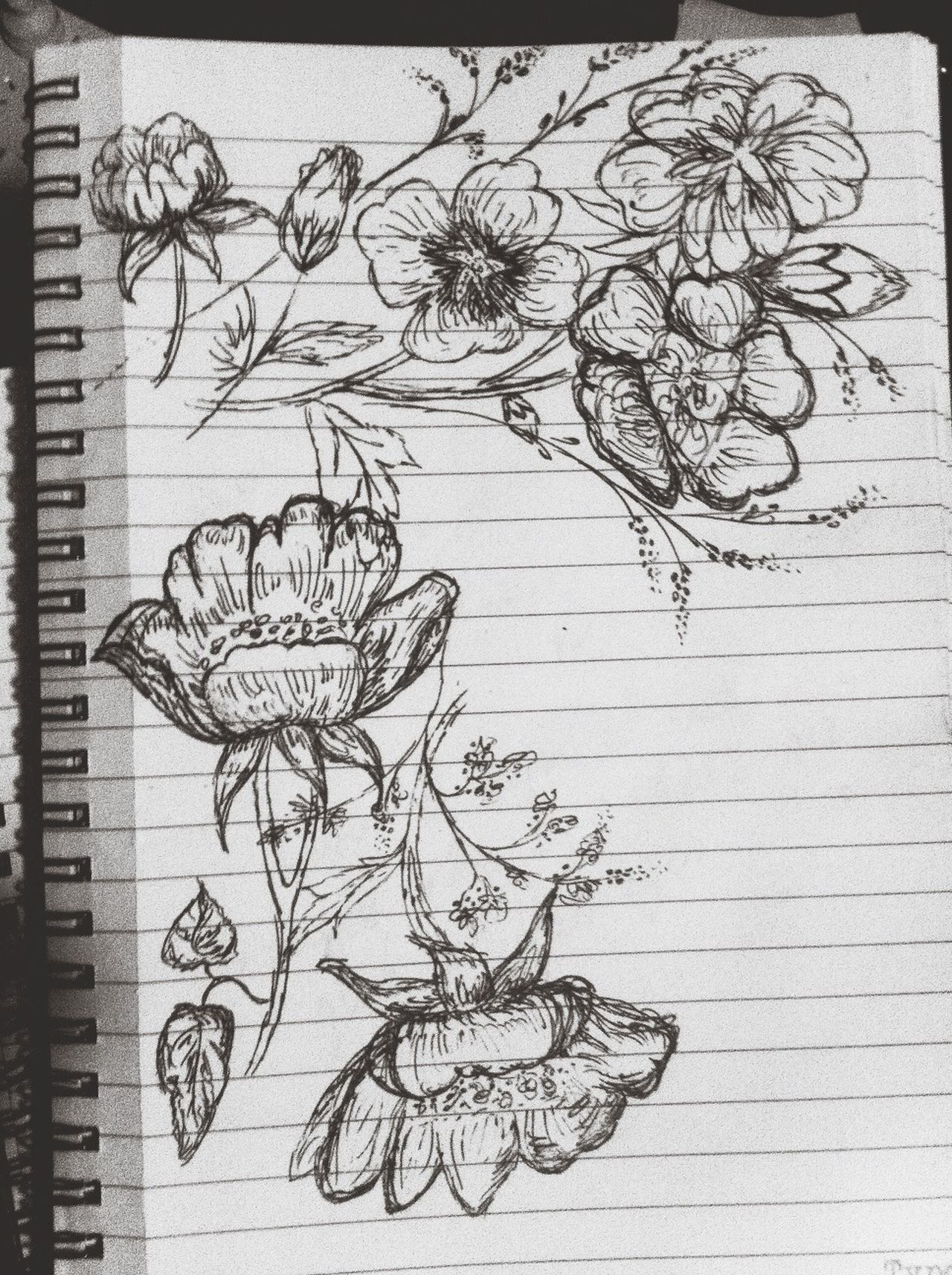 Drawing Art Flowers Capturing Freedom Eye Em Best Shots EyeEm Best Shots Check This Out On Paper