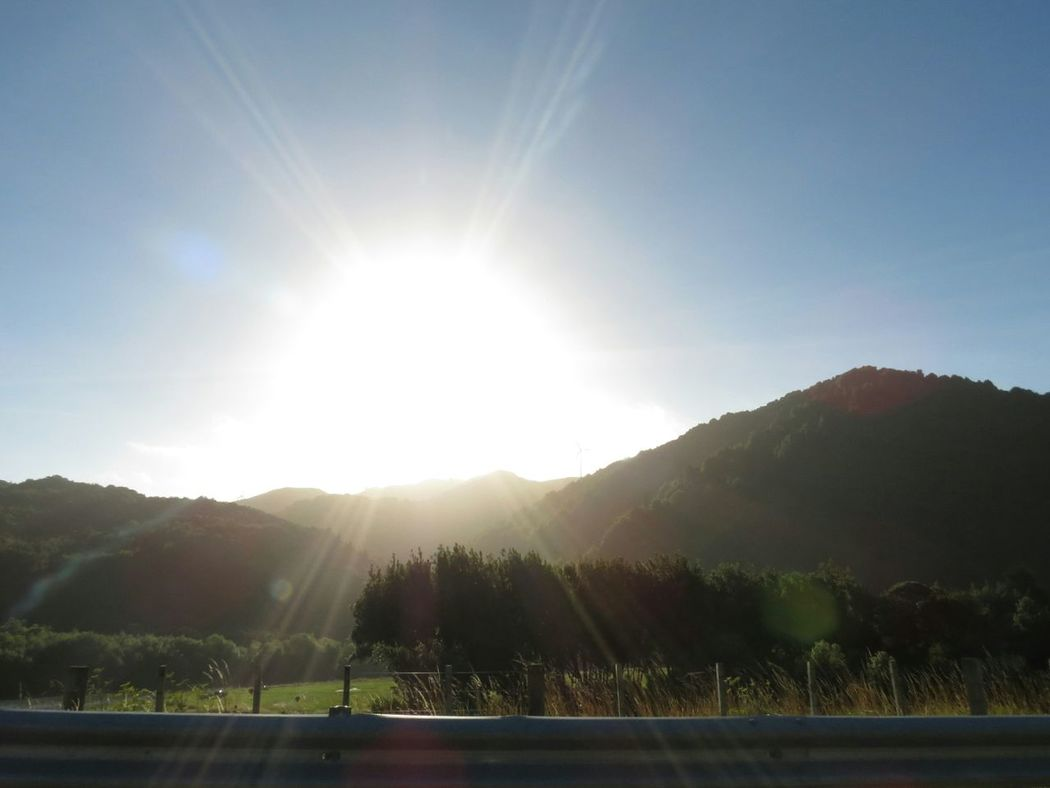Sunlight Lens Flare Barrier Sunbeam Sky No People Outdoors NatureDay Scenic Scenic View Sun Rays Outside Home Ballance Bridge Manawatugorge New Zealand Environment Exploration Beauty In Nature Native Bush Scenics Landscape Mountain Clear Sky Miles Away