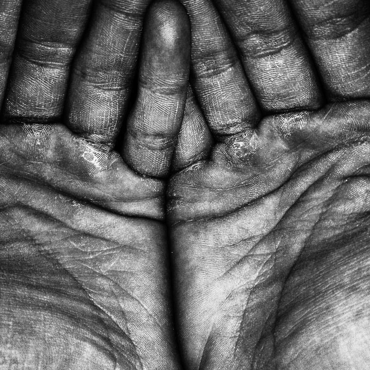 wrinkled, human body part, full frame, close-up, backgrounds, real people, indoors, one person, day, human hand, people