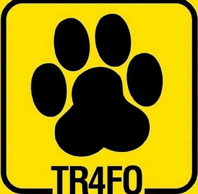 yeterince anlamlı:) Cat Trafo :))
