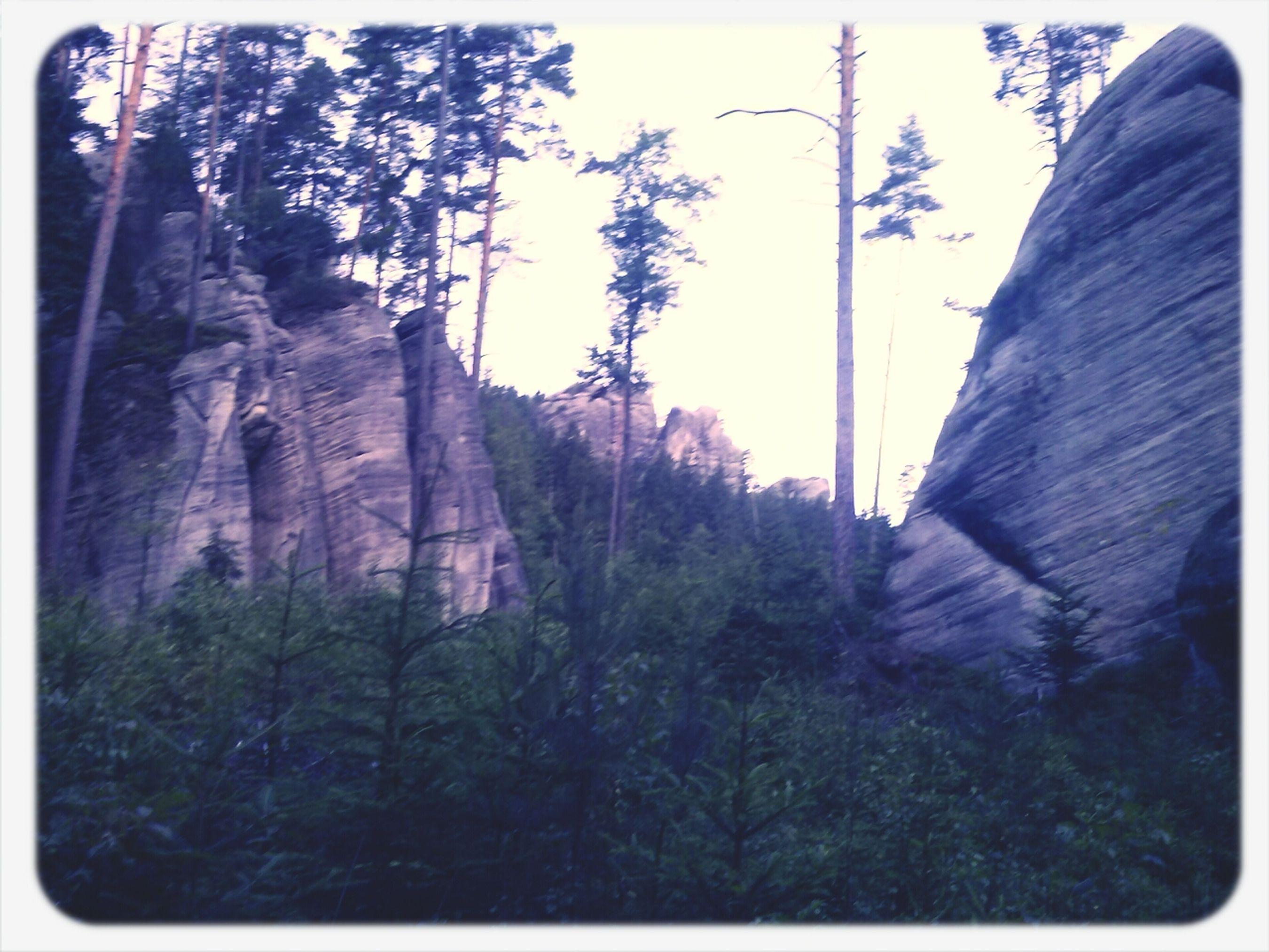 czech republic Mountains Relaxing Summer Love