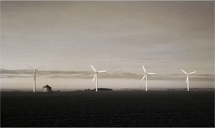 Environmental Conservation Wind Power Wind Turbine Alternative Energy Windmill Rural Scene Renewable Energy Fuel And Power Generation Nature No People Sky Outdoors Beauty In Nature Day Industrial Windmill 3XSPUnity Landscape Black And White Collection  Black And White Photography Late Autumn Evening Welcome To Black EyeEm Ready