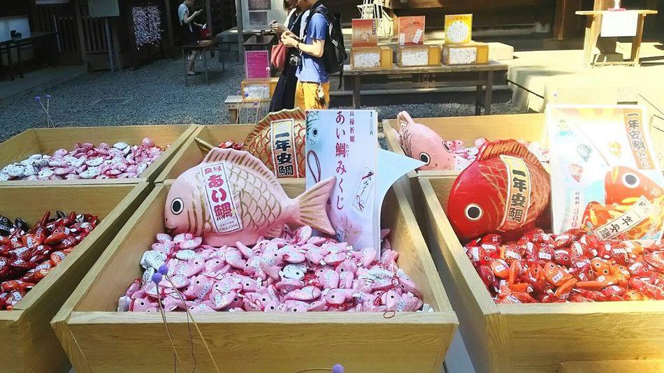あい鯛と 一年安鯛みくじ おみくじ 氷川神社 Japanese Shrine 境内 川越 Japan