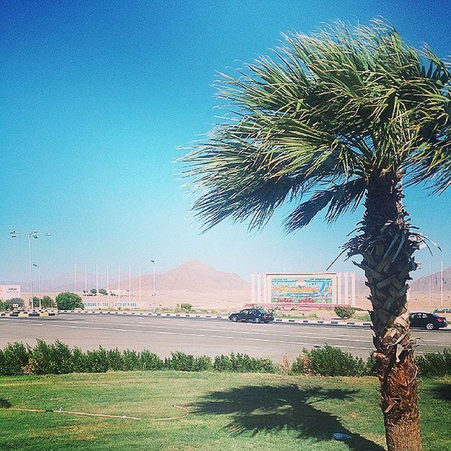 Выехали в гостиницу Weekend Weather Ifollow Instagram Instagood Photo Cool Beatiful Nice New египет Egypt