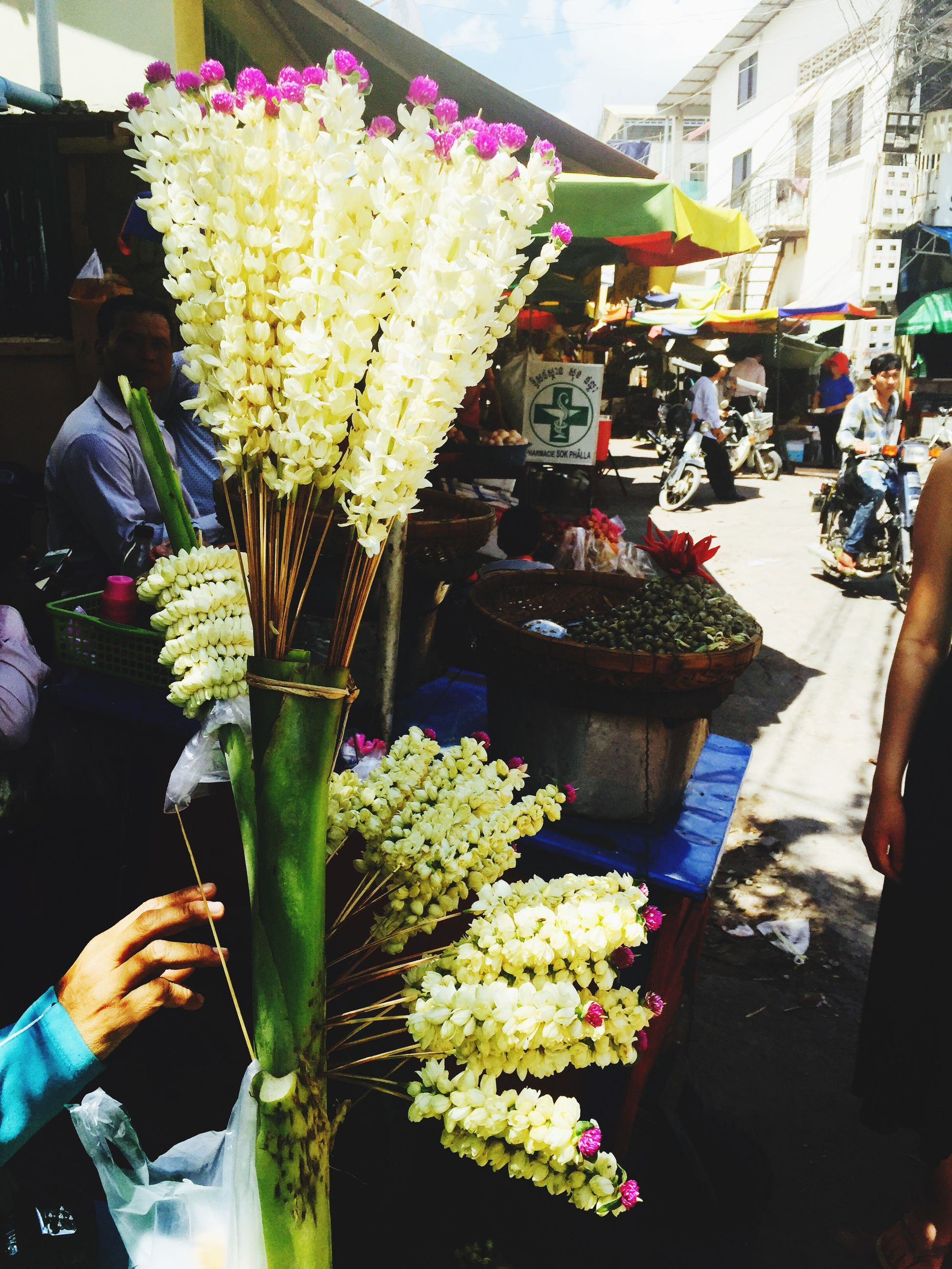 freshness, food and drink, flower, market stall, market, lifestyles, food, for sale, retail, person, variation, men, building exterior, holding, incidental people, leisure activity, architecture, choice