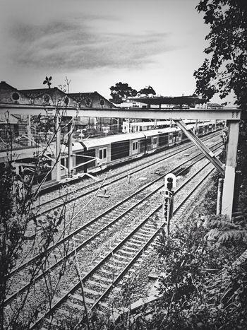 All aboard! Train Train Station Urban Urban Geometry Taking Photos Street Life Blackandwhite Australia Enjoying Life IPhoneography