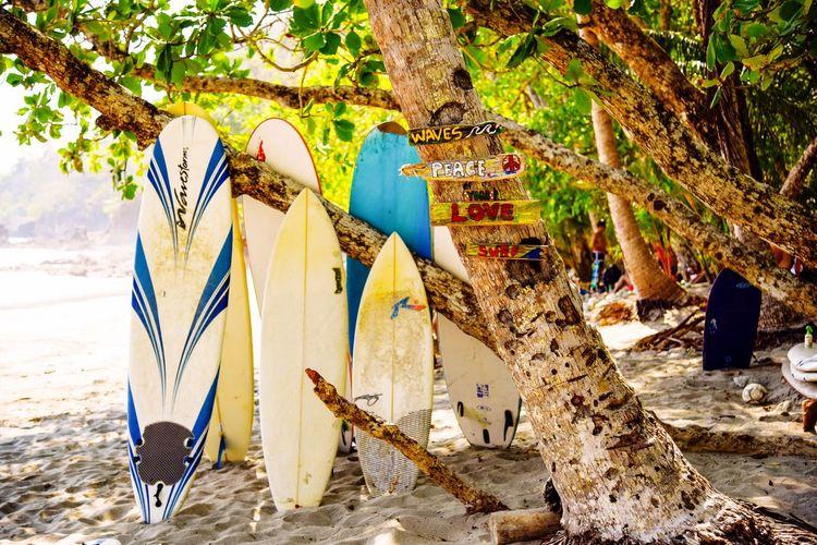 Best  Surf Spot Manuel Antonio Beach Costa Rica Check This Out Hello World Taking Photos Enjoying Life Costa Rica Beaches Beachphotography Pura Vida ✌ Pura Vida Surf Photography Beach Photography Beachlife Surfer Surfing