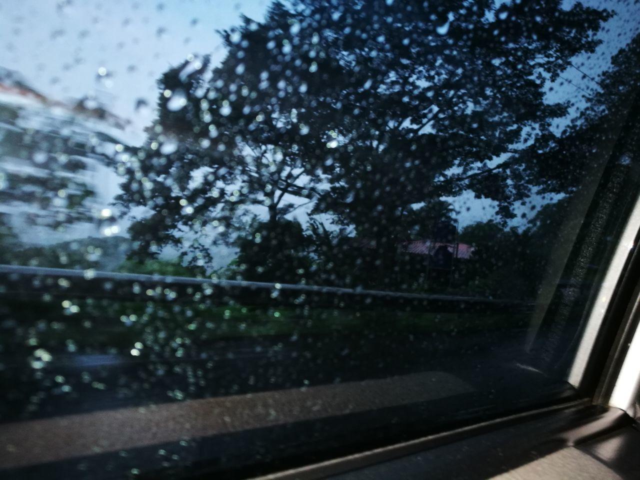 LluviaTime Window Rain☔ Nature Water