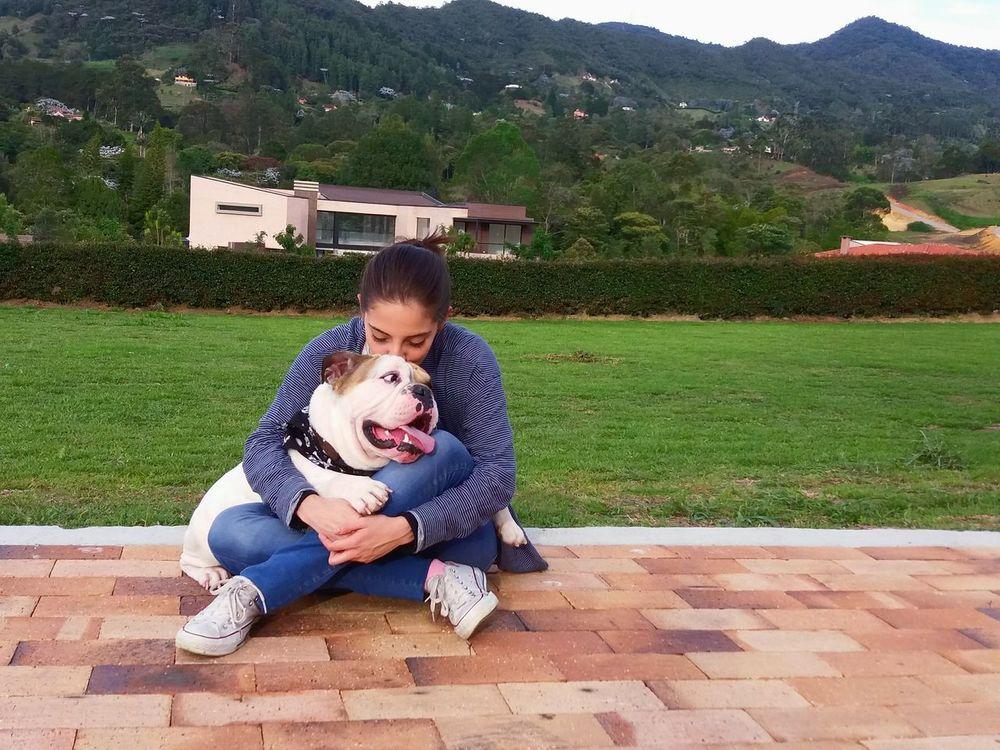 Bulldog Morgan Dogslife Dogofeyeem Lanscape Green
