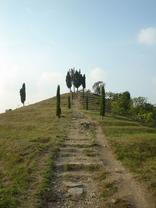 Beauty In Nature Clear Sky Diminishing Perspective Footpath Hill Hillside Italy Landscape Nature Outdoors Poplars Sky The Way Forward Tree