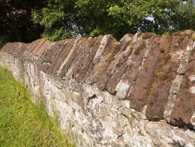 Eine Mauer um einen alten Bauernhof Ancient Brick Building Brick Wall Bricks Countryside Farm Life Garden Garden Photography Grass Grunge GrungeStyle Old Buildings Rough Stone Urban Wall Wall Art