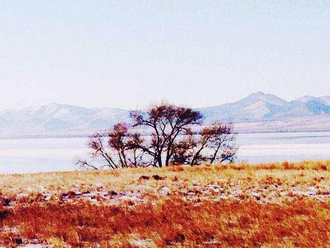 Taking Photos Montana