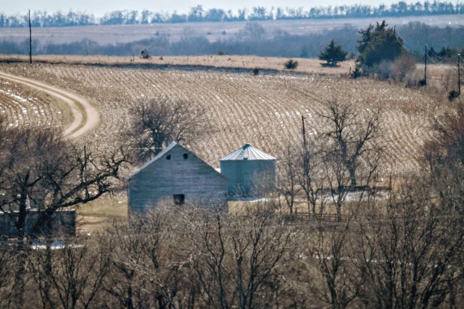 Visual Journal February 2017 Thayer County, Nebraska Agriculture America Architecture Beauty In Nature Built Structure Country Living EyeEm Best Shots EyeEm Gallery Farm Field FUJIFILM X-T1 Fujifilm_xseries Getty Images Landscape MidWest Nebraska Nikkor 500mm F8 Outdoors Photo Diary Rural America Rural Landscape Rural Scene Scenics Small Town Stories Visual Journal