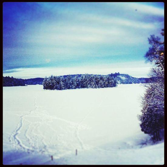 My Home :) Enjoying Life Scenery Shots Winter My Home