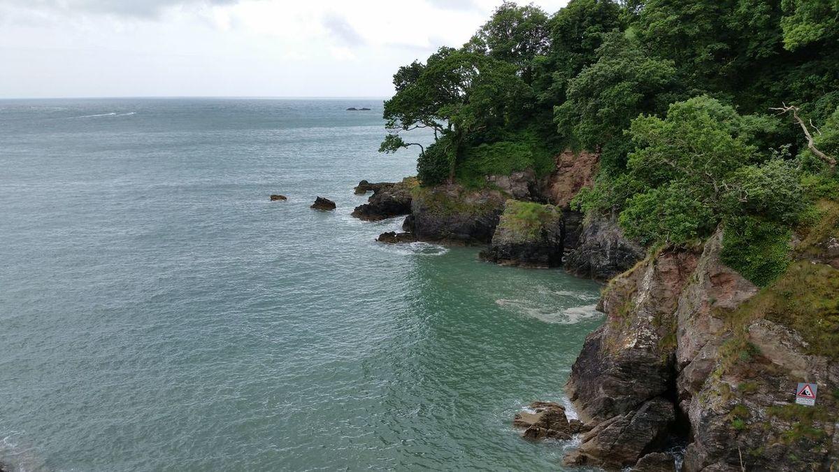 Coast Coastline Dartmouth Dartmouthcastle Devon England Nature Scenics Sea Trees