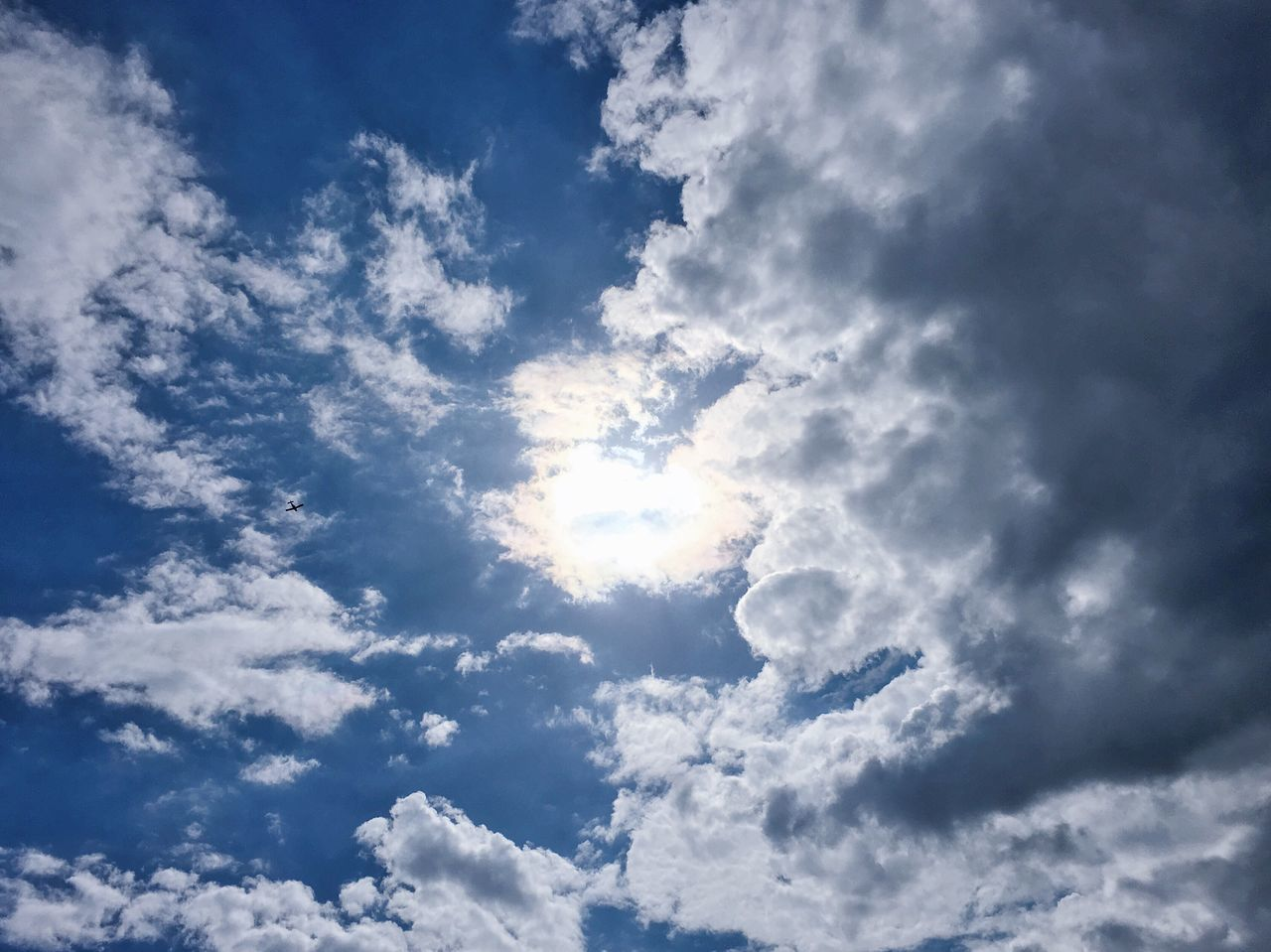 Cloud - Sky Sky Nature Low Angle View Beauty In Nature Tranquility Blue Fluffy No People Scenics Sunlight Day Backgrounds Heaven Cumulus Sky Only Outdoors