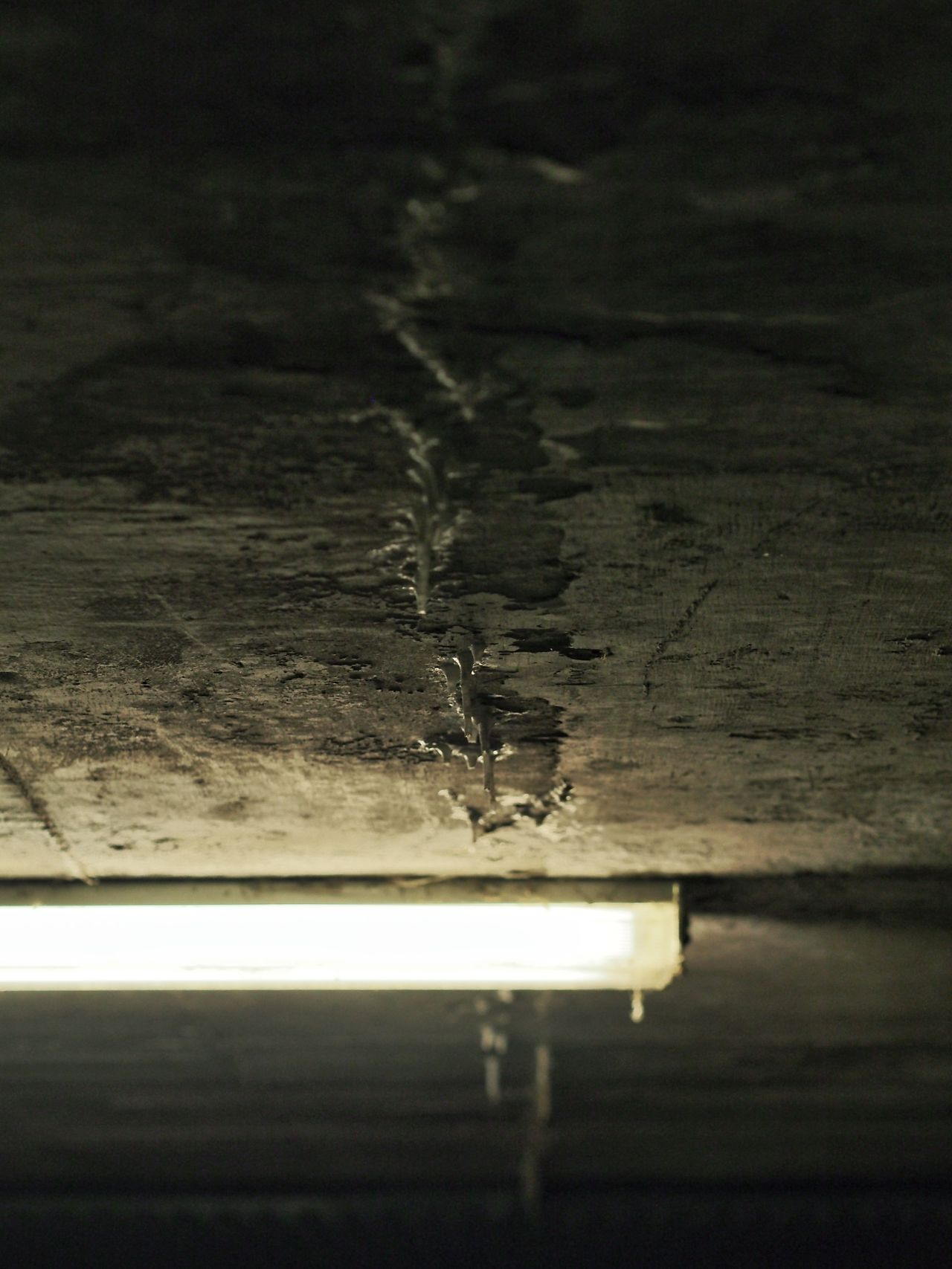 Stalactite  Concrete Grey Flouresent Light Ljusrör Betong M.Zuiko 45mm 1:1,8