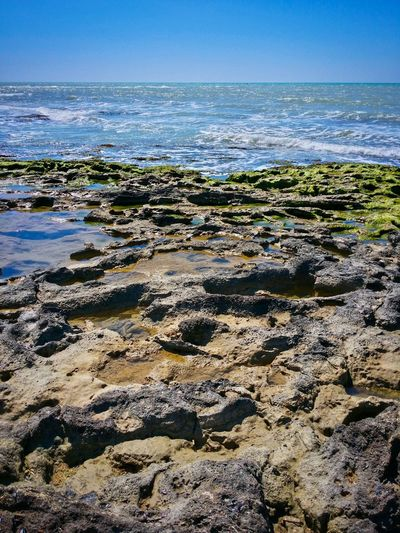 Low Tide Revelations Punta Braccetto Ragusa Sicily Italy Travel Photography Travel Voyage Traveling Mobile Photography Fine Art Scenic Landscapes Nature Shorelines Rocks Sea Waves Mobile Editing The Great Outdoors With Adobe