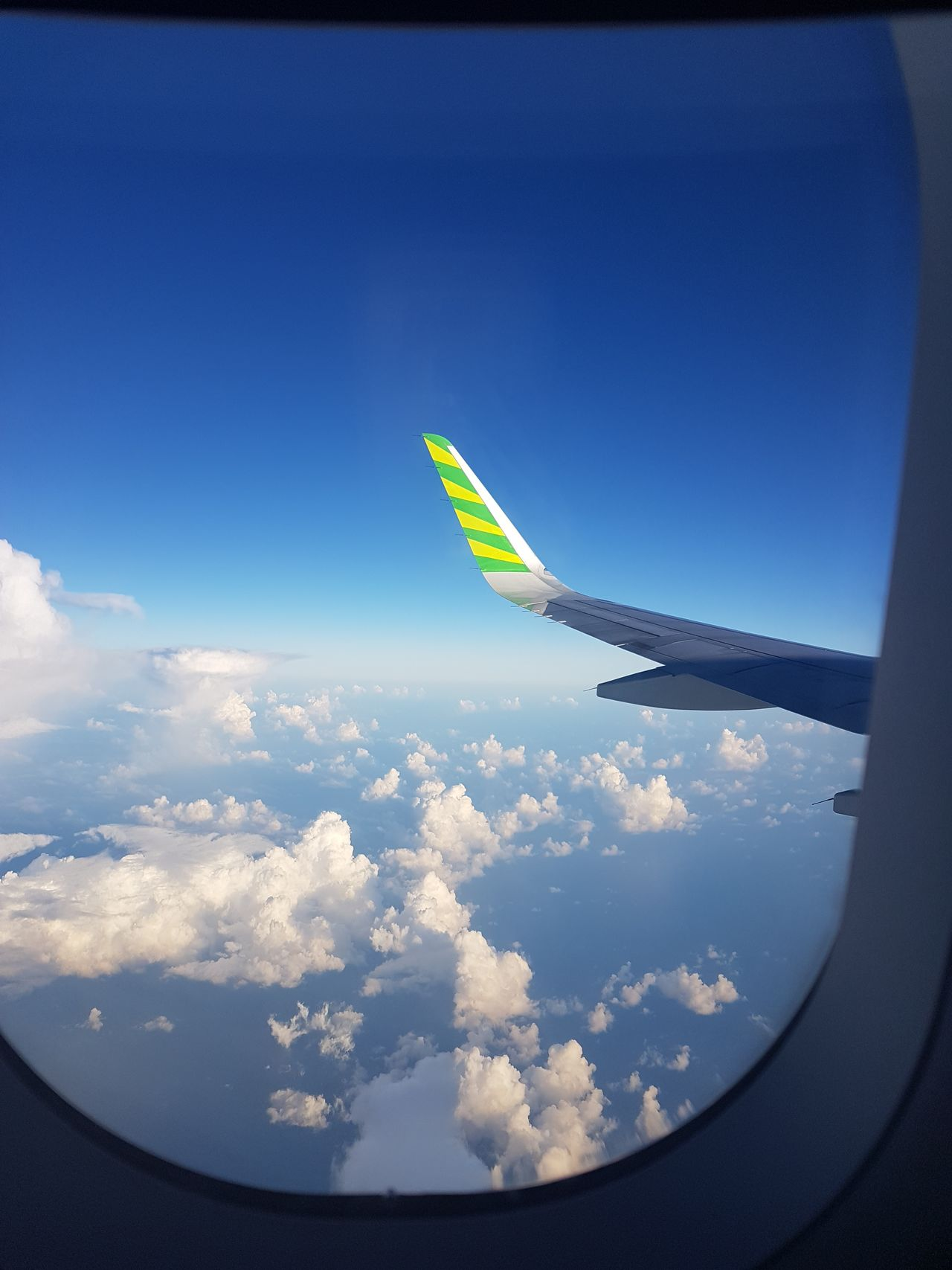 Fly high ✈🛩 Airplane Flying Cloud - Sky Sky Outdoors Nature