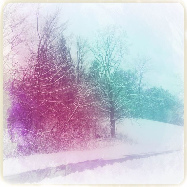Nature Cold Temperature Bare Tree Tree Snow Clear Sky Winter No People Outdoors Tranquility Sky Branch Day Beauty In Nature Scenics Freshness