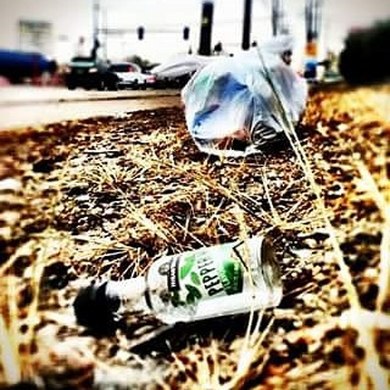 Art Artproject Trash Alcohol Denver 303 Peppermintschnapps Photo Photoedit Photoproject City Uglybeautiful Aurora Streetart Livelife Likeforlike Followforfollow Love Hate Lifesproblems Recover Litter