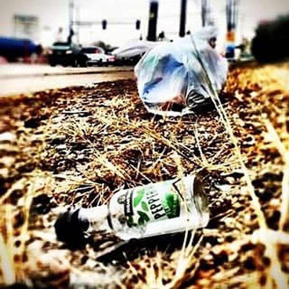 Art Artproject Trash Alcohol Denver 303 Peppermintschnapps Photo Photoedit Photoproject City Uglybeautiful Aurora Streetart Livelife Likeforlike Followforfollow Love Hate Lifesproblems Recover Litter