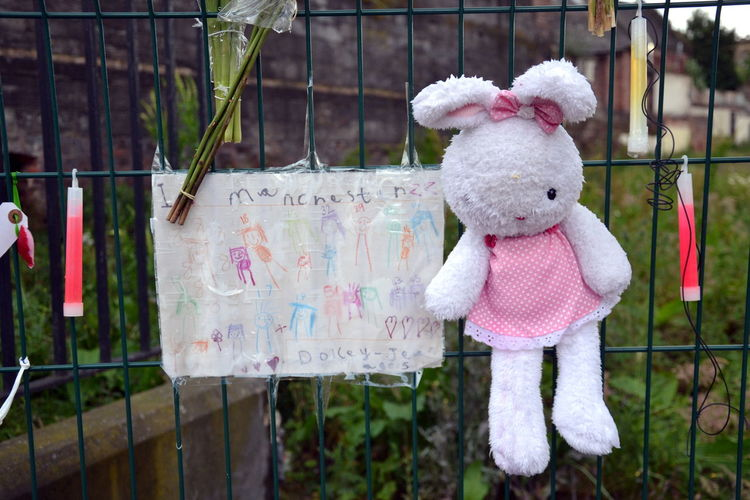 Art Chetham's School Of Music Child Childhood Day Hanging I Love You Love Love ♥ Manchester Arena Bombing Manchester UK Memorial One Person Outdoors People Place Of Heart Rabbit Stuffed Toy The Great Outdoors - 2016 EyeEm Awards The Photojournalist - 2017 EyeEm Awards The Street Photographer - 2017 EyeEm Awards Tranquil Tranquillity Tree