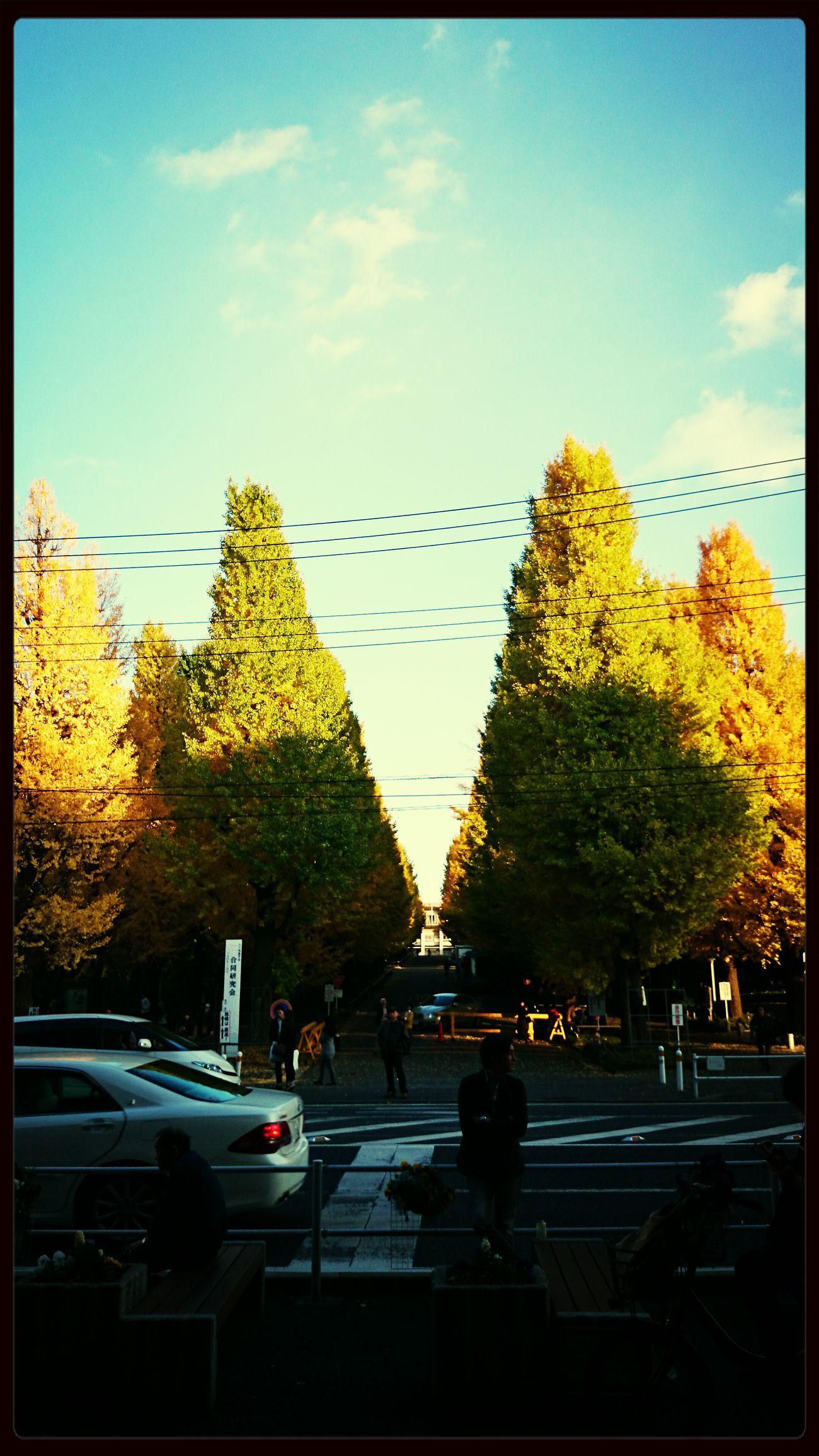 慶應義塾大学!!!!やべー笑