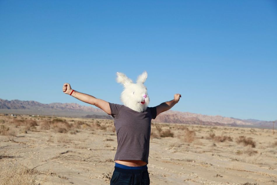 Beautiful stock photos of osterhasen, Arm Raised, Arms Outstretched, Beauty In Nature, Carefree