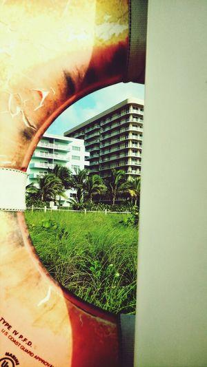 Lifering Girlskick Life Is A Beach Whatawonderfulworld