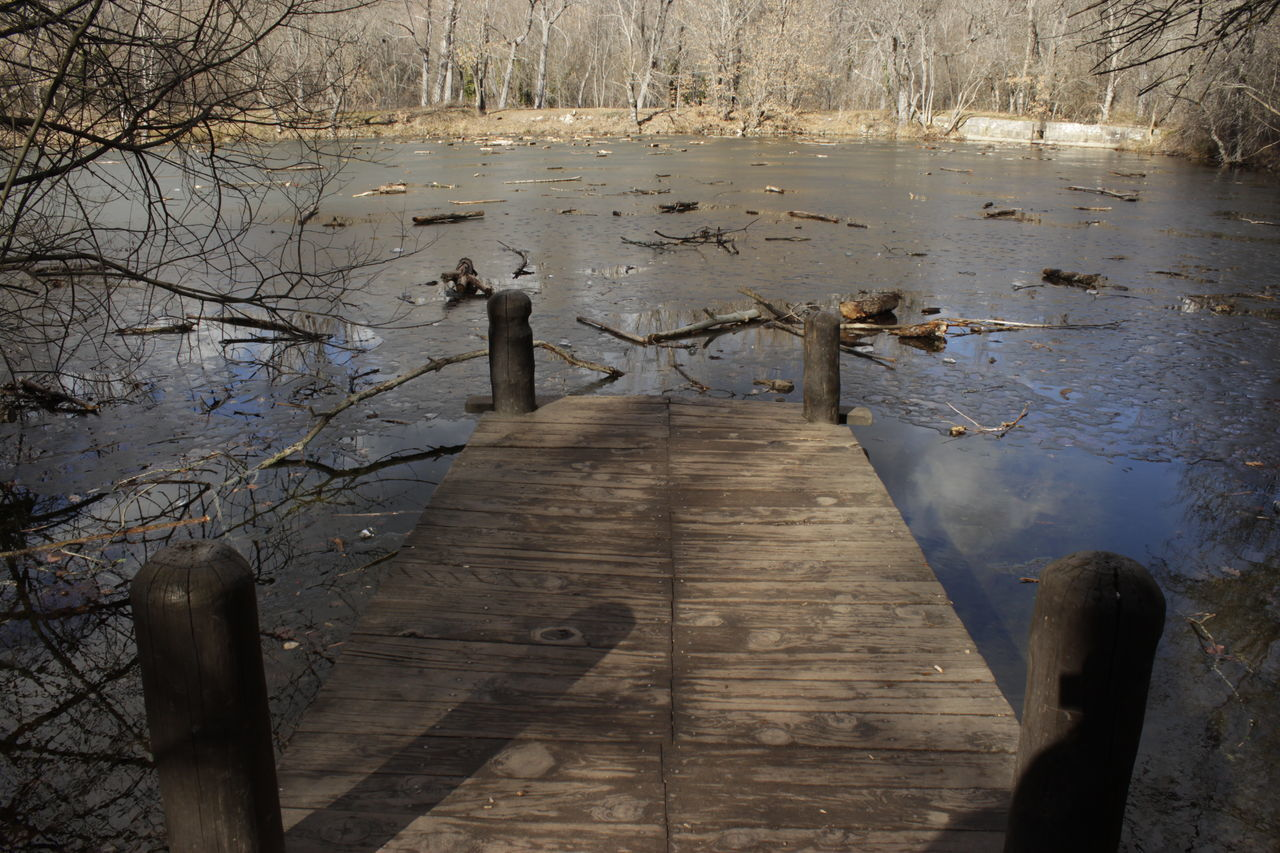 wood - material, water, nature, outdoors, day, tranquility, lake, no people, tree, beauty in nature