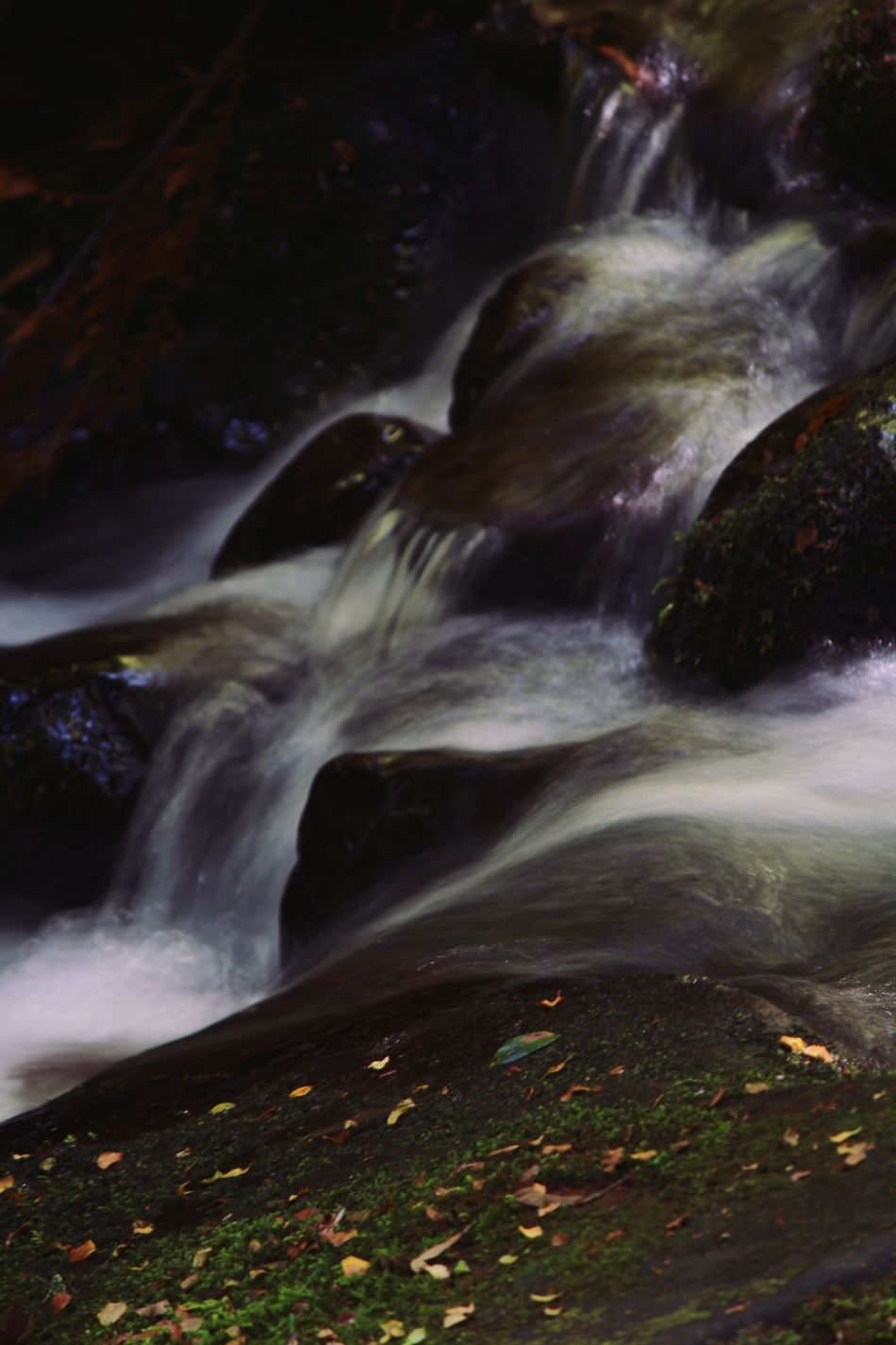 Yarra Valley Adventure Warburton Yarra River Rock - Object Running Water River Beauty In Nature Scenics Waterfall Motion Stream - Flowing Water Flowing Flowing Water