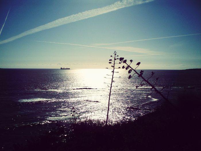 Seascape Sea Marii Sunset