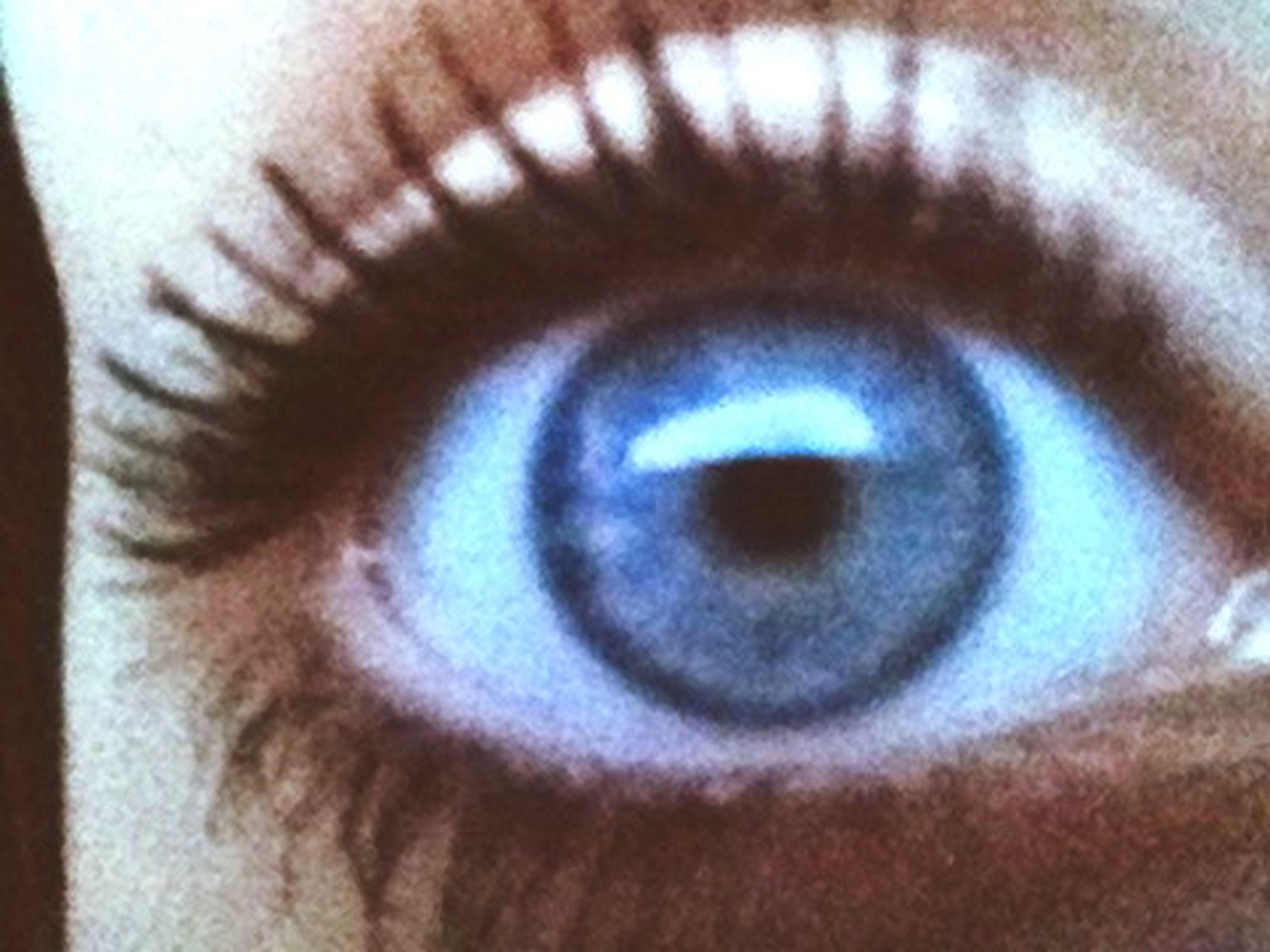 human eye, close-up, eyesight, indoors, eyelash, extreme close-up, part of, human skin, sensory perception, full frame, iris - eye, unrecognizable person, eyeball, extreme close up, selective focus, backgrounds, circle
