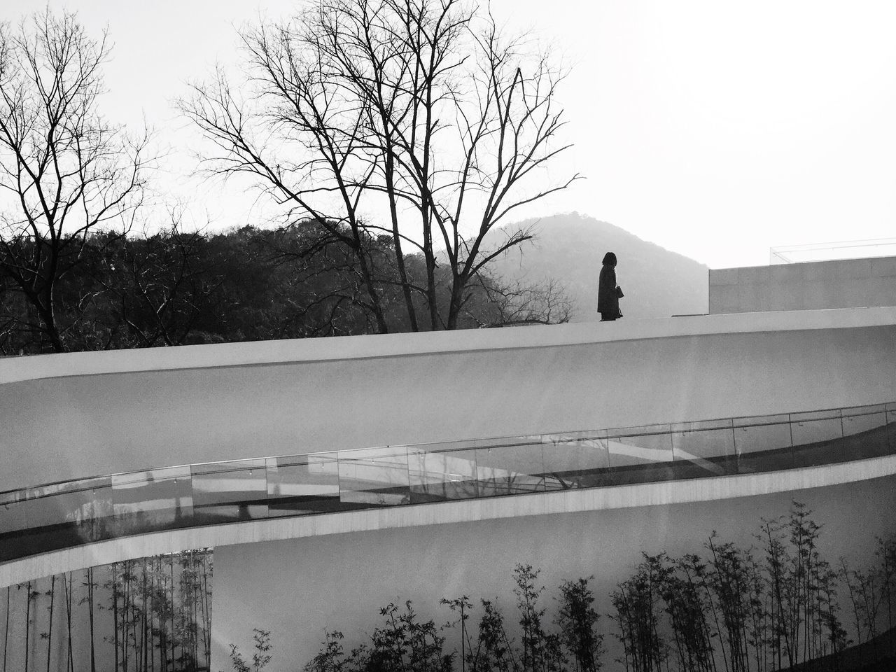 Architecture Built Structure Leisure Activity Walking Around Walking On The Roof Rooftop Monochrome Beauty In Nature One Person Outdoors Black & White Black And White Blackandwhite Black&white Tree Trees Hill Mountain