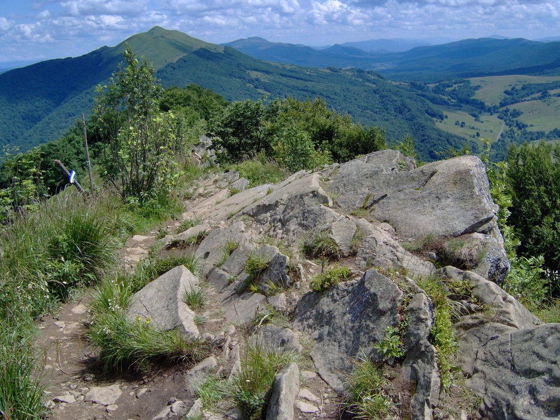 Poland Bieszczadymountains Mountain Green Color Travel Destinations Mountain Range Nature Landscape Mountain Peak Beauty In Nature Outdoors Scenics Plant Sport