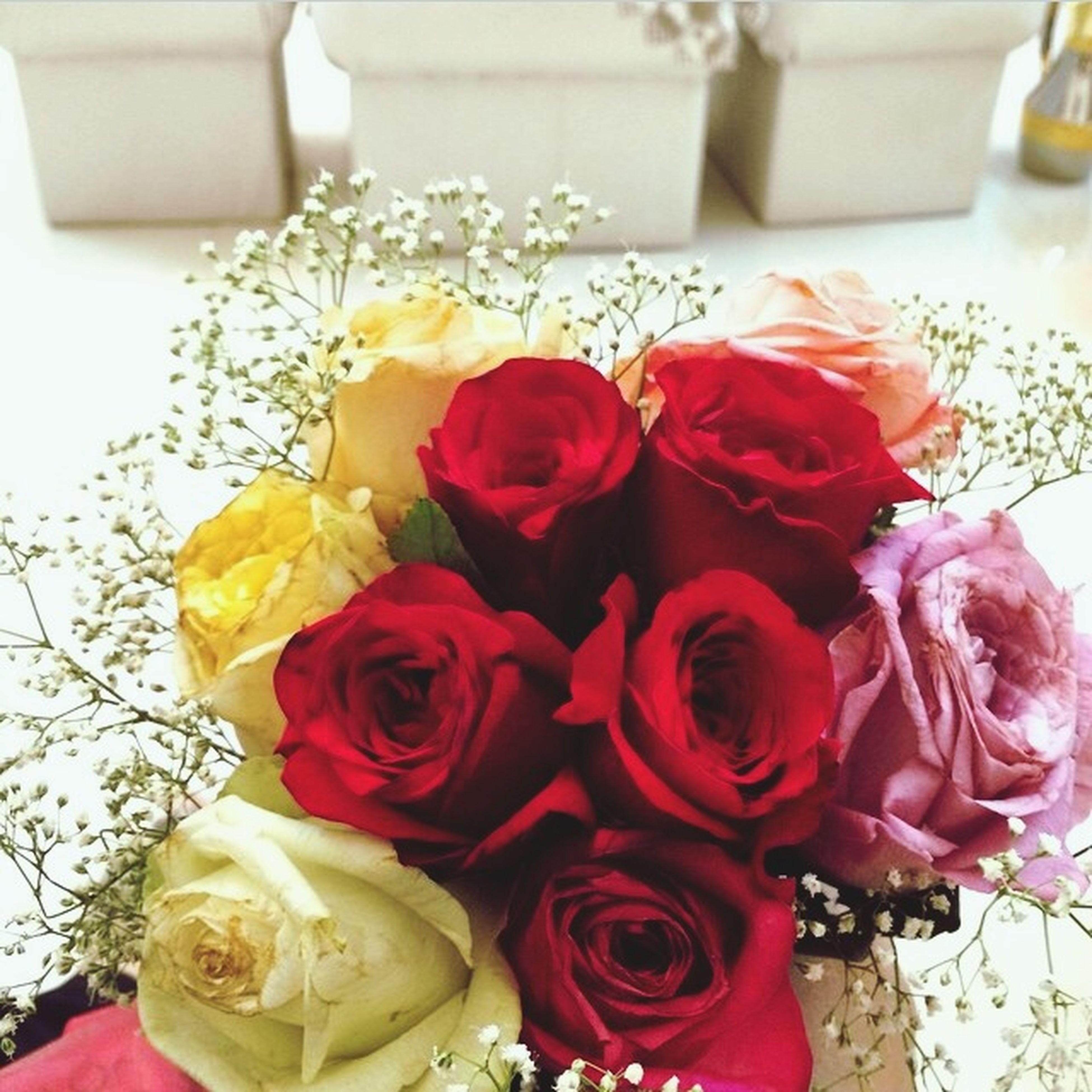 freshness, indoors, flower, rose - flower, petal, sweet food, close-up, still life, flower head, fragility, dessert, decoration, food, bouquet, food and drink, red, vase, table, indulgence, rose